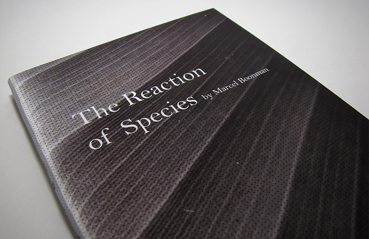 the_reaction_of_species_03
